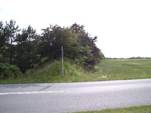 Ved Vandløsvej, 28. jun 2004, hvor banen forsvinder mod vest ad Hørby til