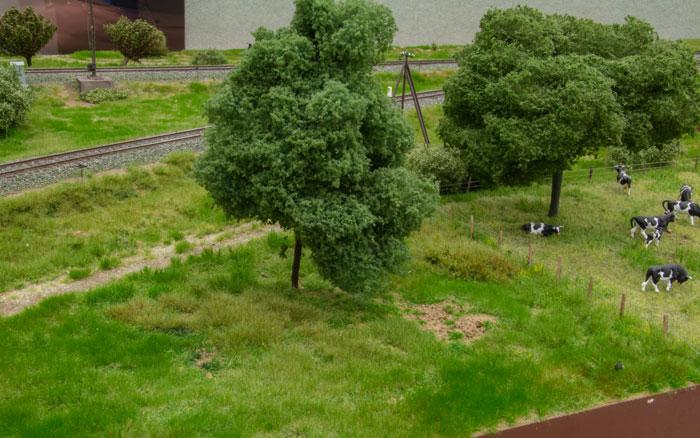 Brakmark og græsningsareal side om side