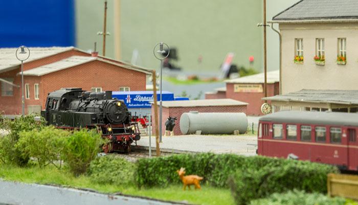 Damplokomotiv og skinnebustog afventer tjeneste