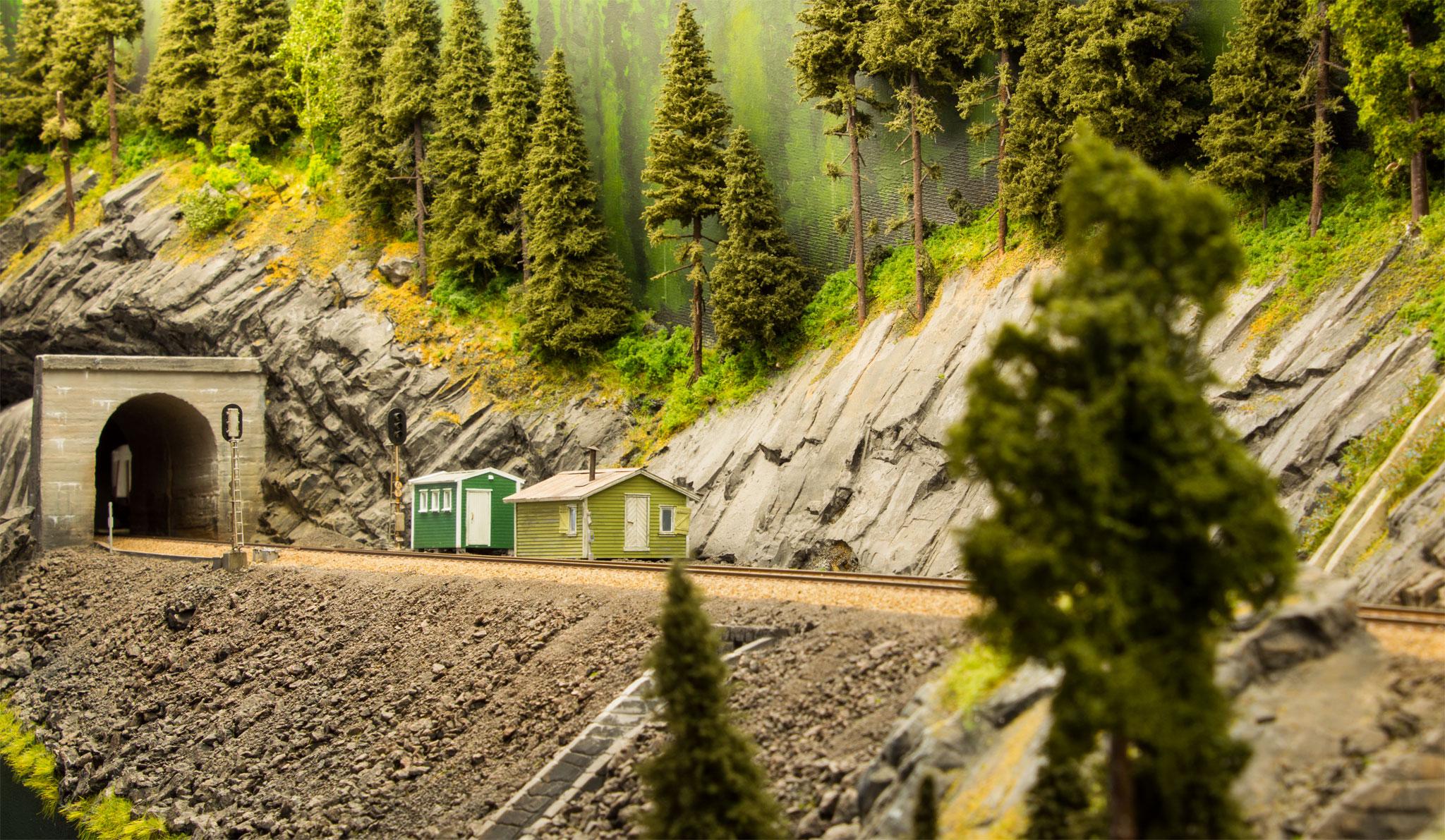 Tunnelen ved Botn