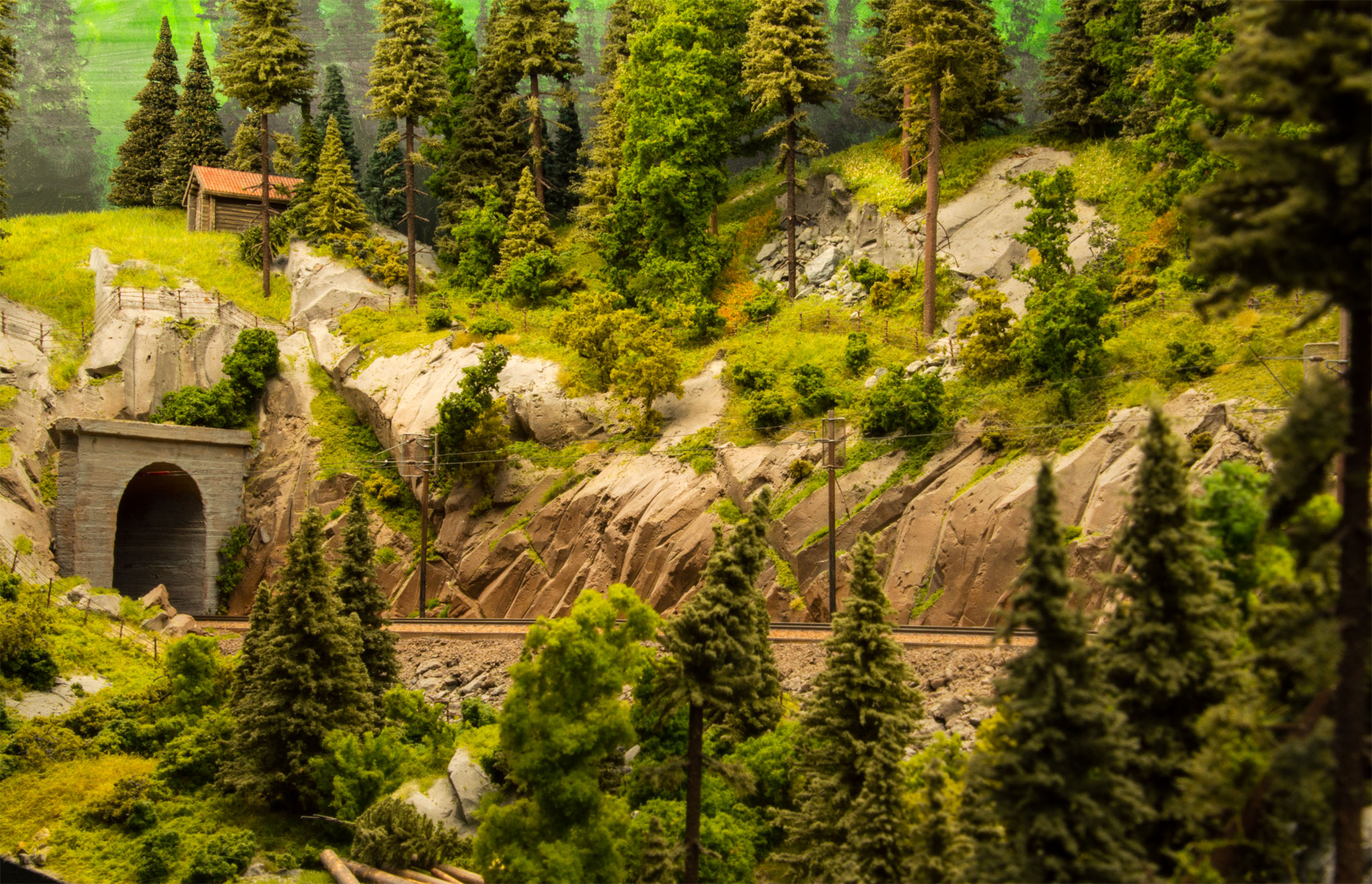 Tunnel ved Rukkeskogen