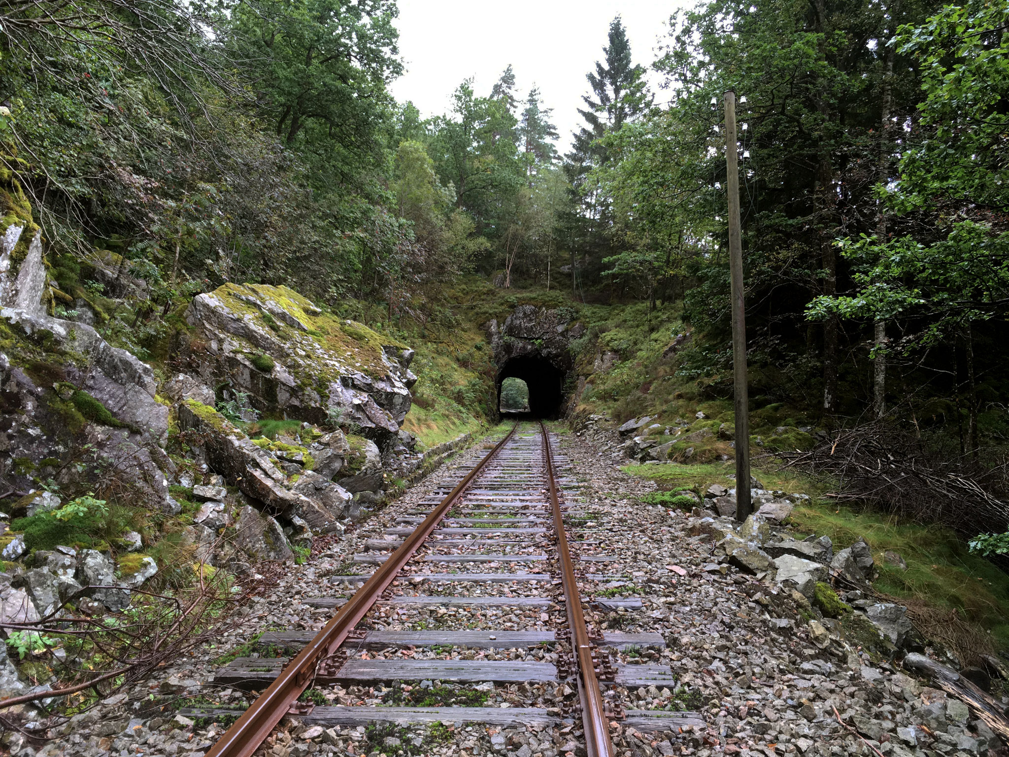 Tunnel efter Flekkeid